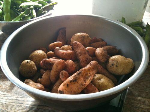 Favas&Potatoes