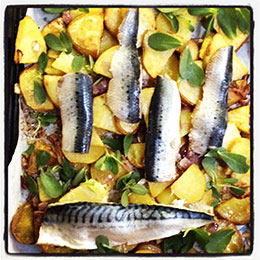 Mackerel Roast