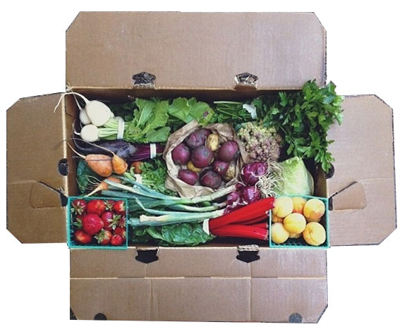 Eatwell Farm CSA Box